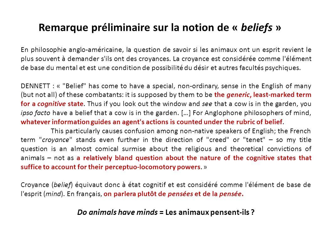 Remarque préliminaire sur la notion de « beliefs »