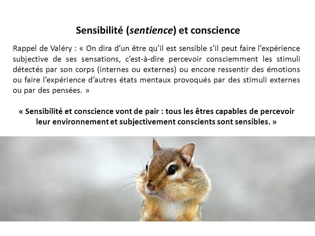 Sensibilité (sentience) et conscience