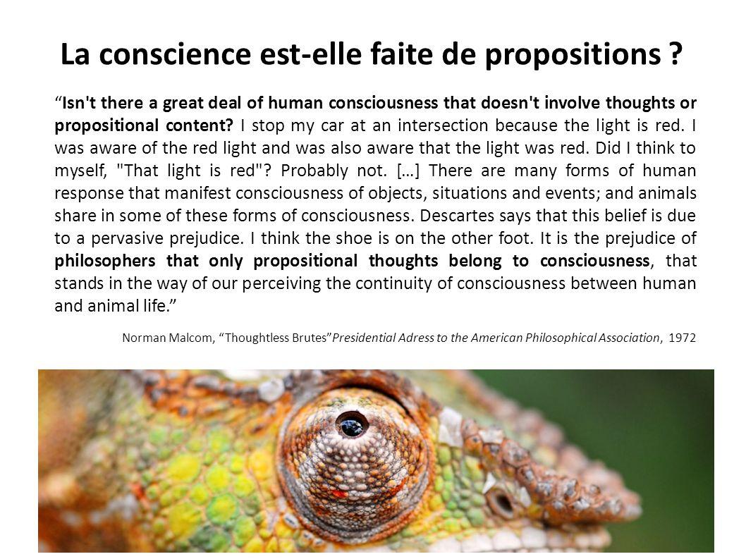 La conscience est-elle faite de propositions