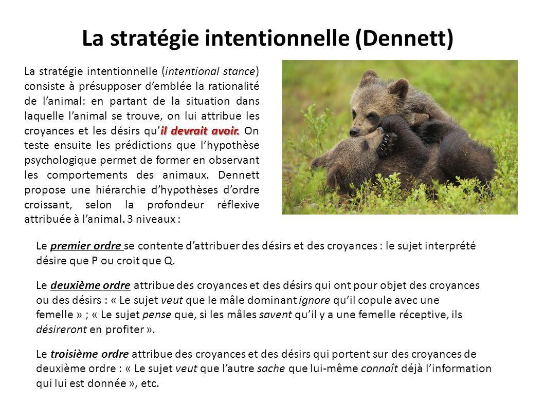 La stratégie intentionnelle (Dennett)