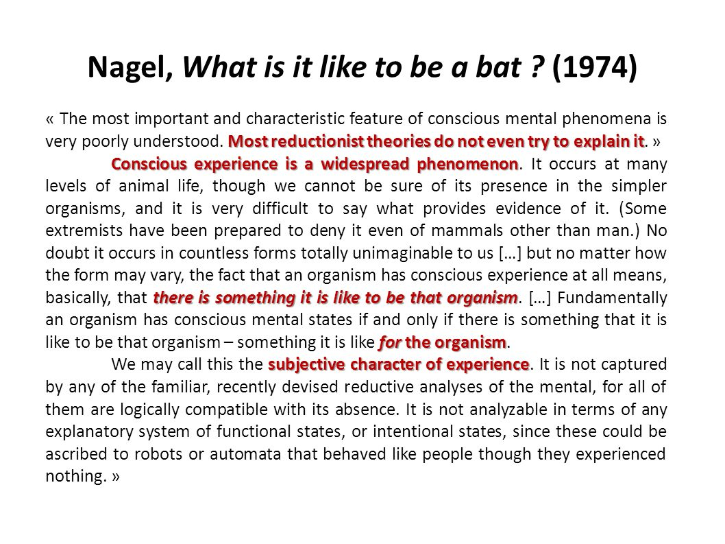 Nagel, What is it like to be a bat (1974)