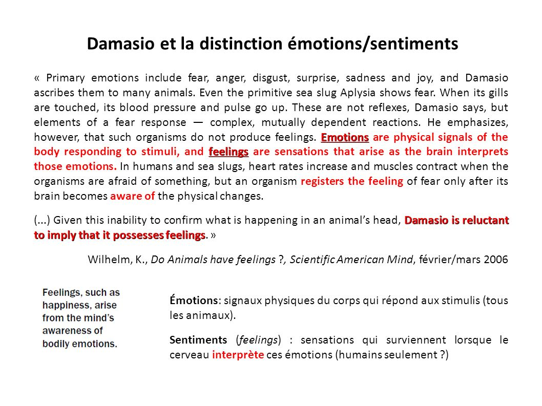 Damasio et la distinction émotions/sentiments