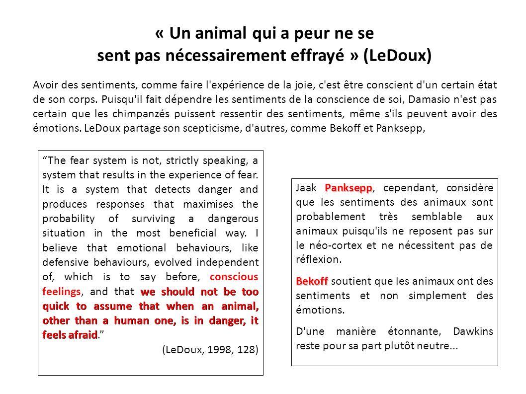 « Un animal qui a peur ne se sent pas nécessairement effrayé » (LeDoux)