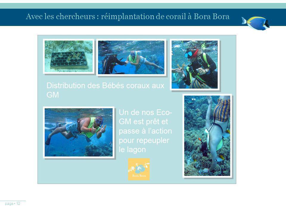 Avec les chercheurs : réimplantation de corail à Bora Bora