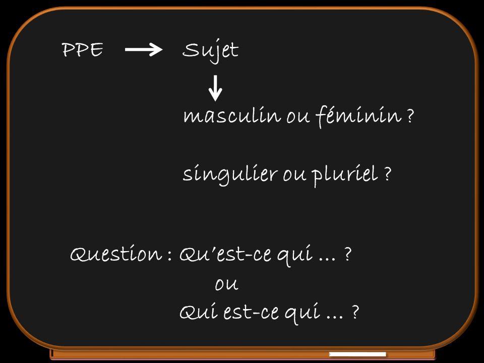 PPE Sujet. masculin ou féminin . singulier ou pluriel .