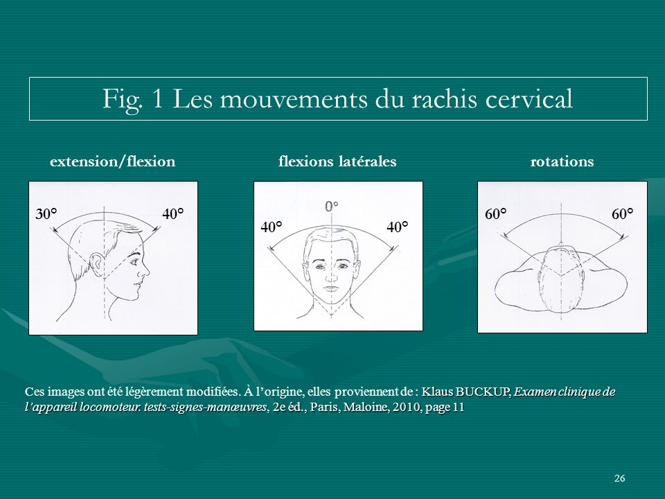 Fig. 1 Les mouvements du rachis cervical