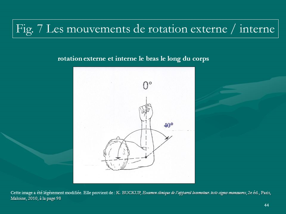 rotation externe et interne le bras le long du corps