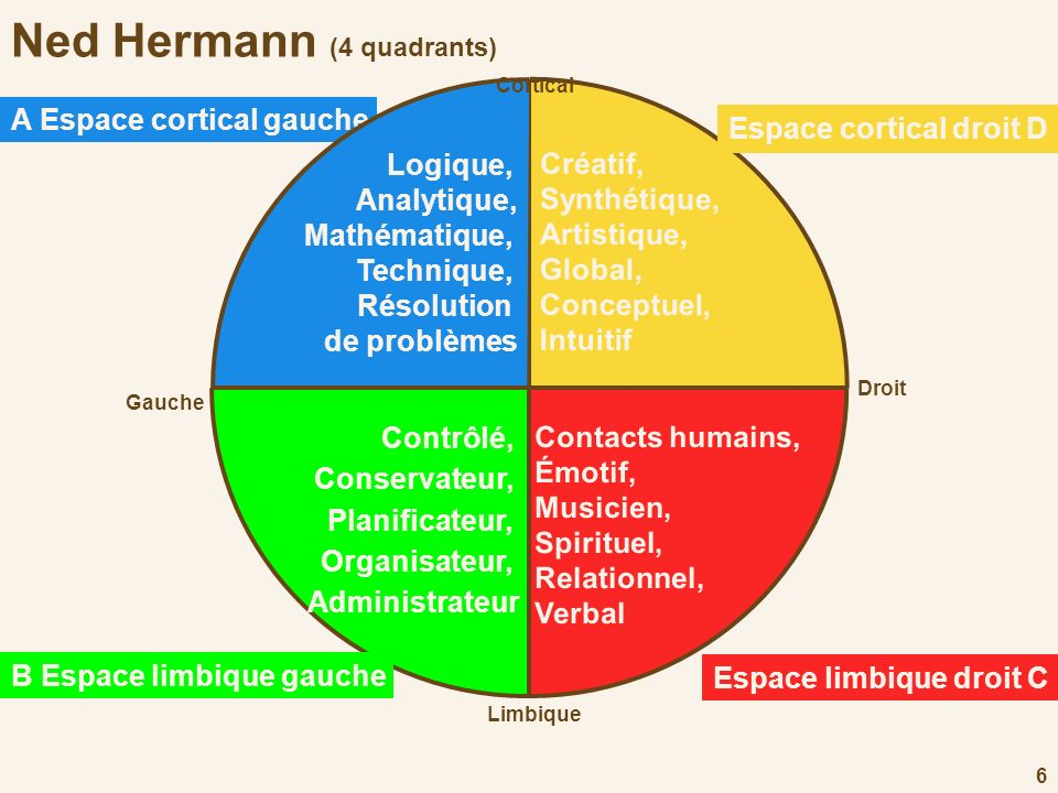 Ned Hermann (4 quadrants)