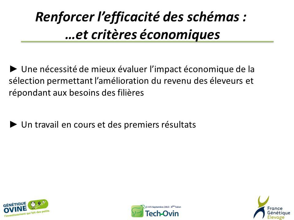 Renforcer l'efficacité des schémas : …et critères économiques