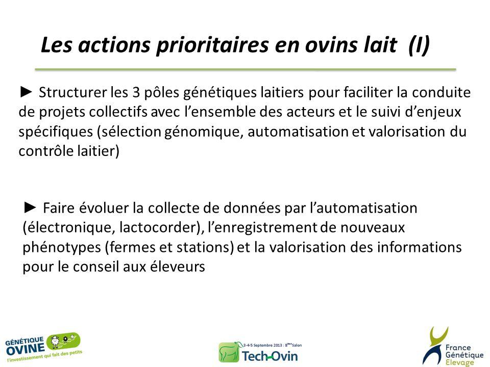 Les actions prioritaires en ovins lait (I)
