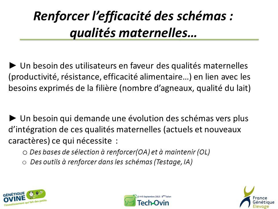 Renforcer l'efficacité des schémas : qualités maternelles…