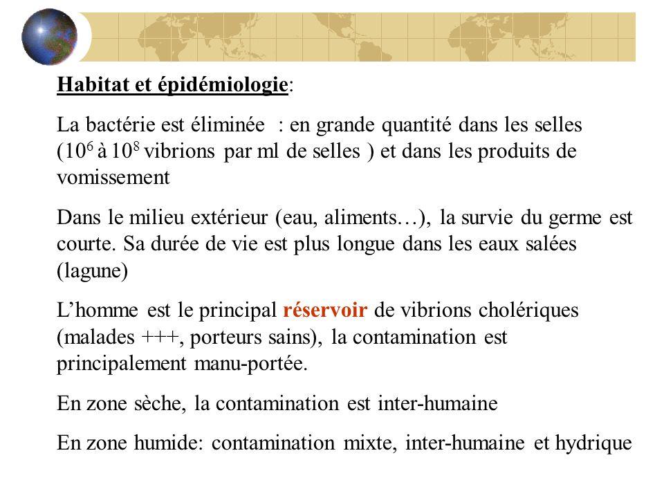 Habitat et épidémiologie: