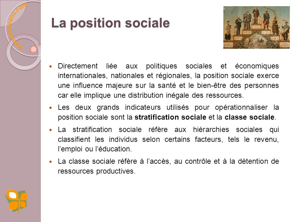La position sociale