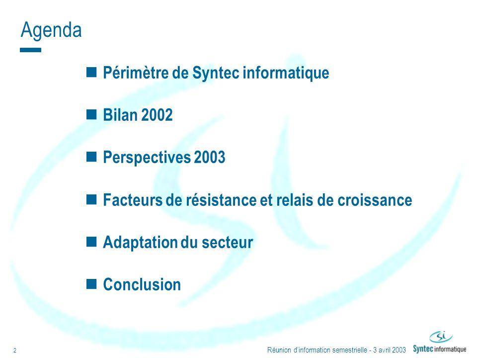 Agenda Périmètre de Syntec informatique Bilan 2002 Perspectives 2003