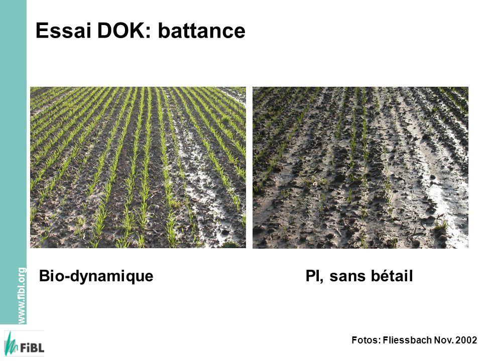 Essai DOK: battance Bio-dynamique PI, sans bétail