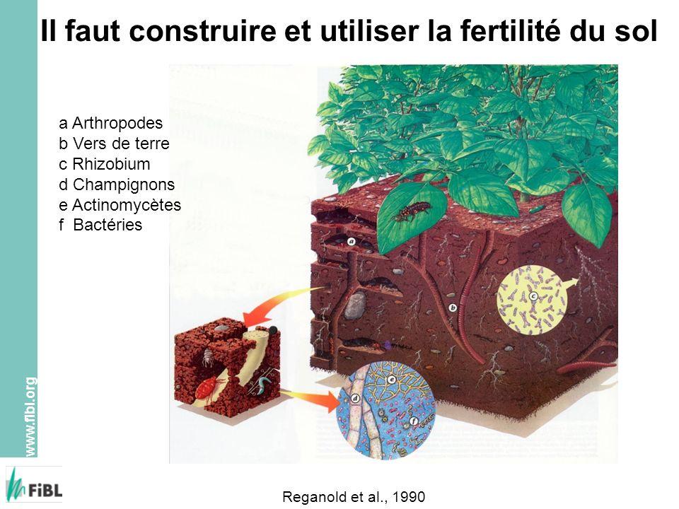 Il faut construire et utiliser la fertilité du sol