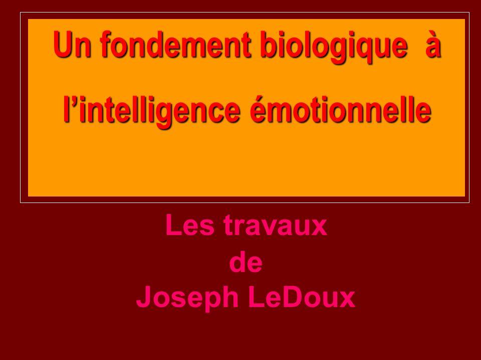 Un fondement biologique à l'intelligence émotionnelle