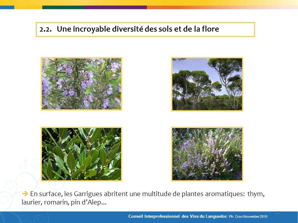 2.2. Une incroyable diversité des sols et de la flore
