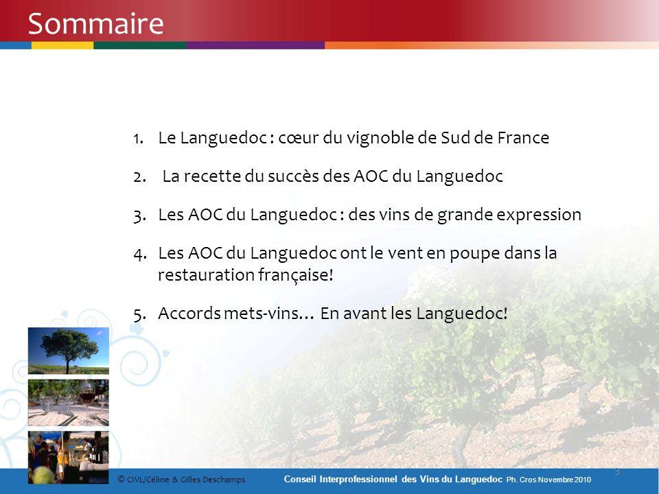 Sommaire Le Languedoc : cœur du vignoble de Sud de France