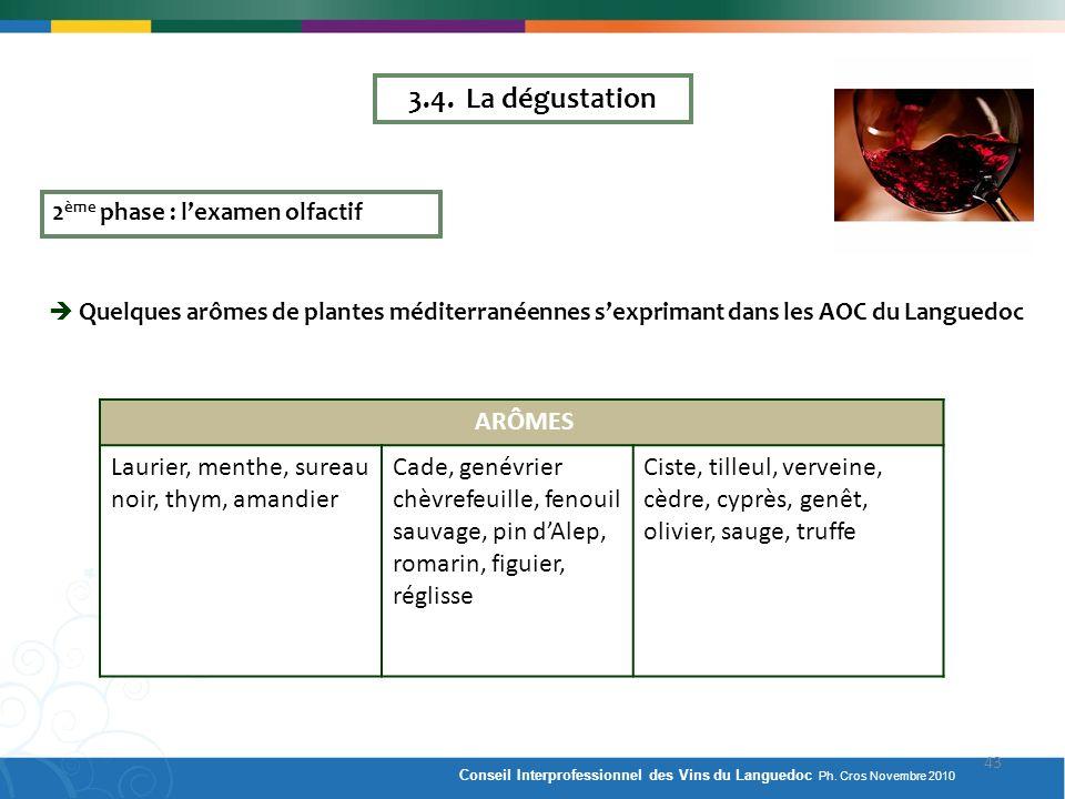 3.4. La dégustation 2ème phase : l'examen olfactif.  Quelques arômes de plantes méditerranéennes s'exprimant dans les AOC du Languedoc.