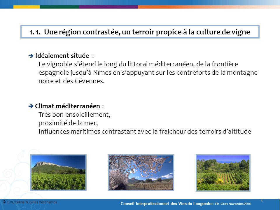 1. 1. Une région contrastée, un terroir propice à la culture de vigne