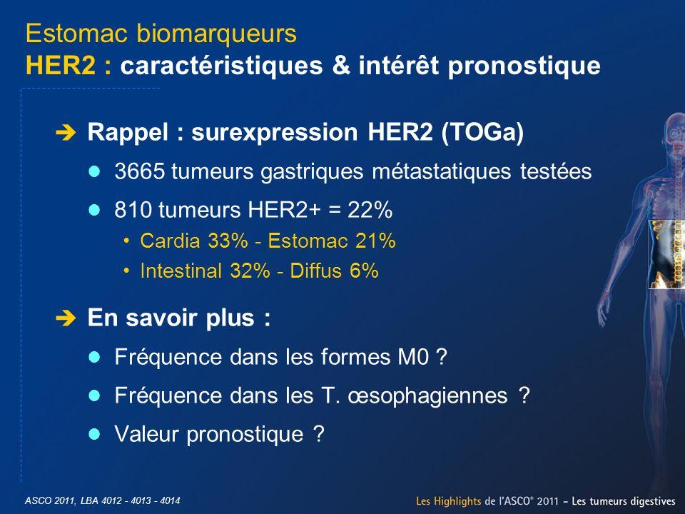 Estomac biomarqueurs HER2 : caractéristiques & intérêt pronostique