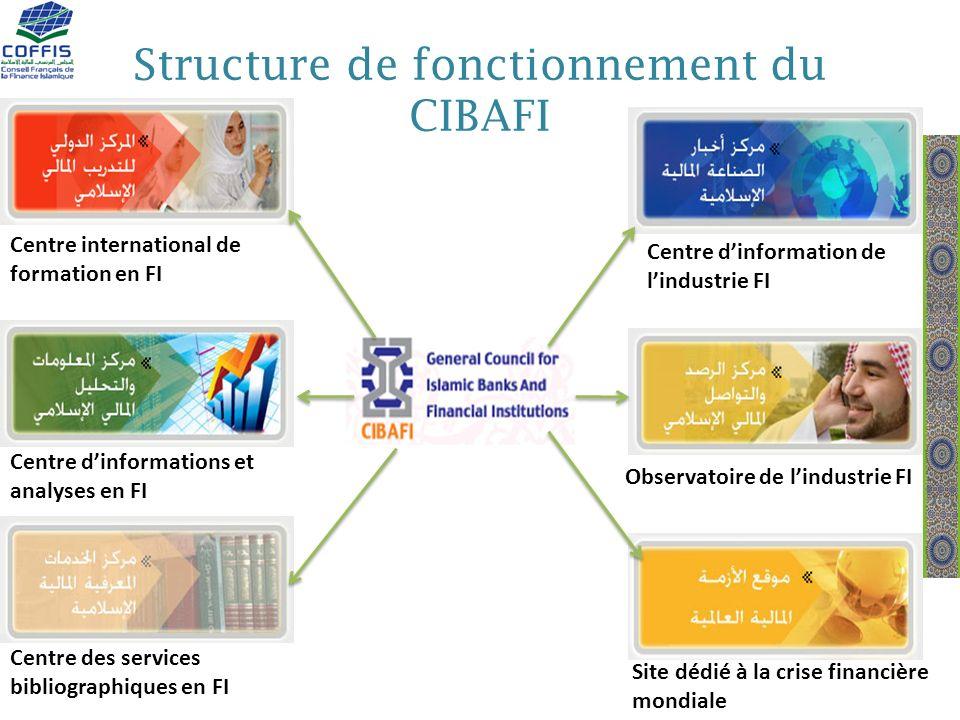 Structure de fonctionnement du CIBAFI