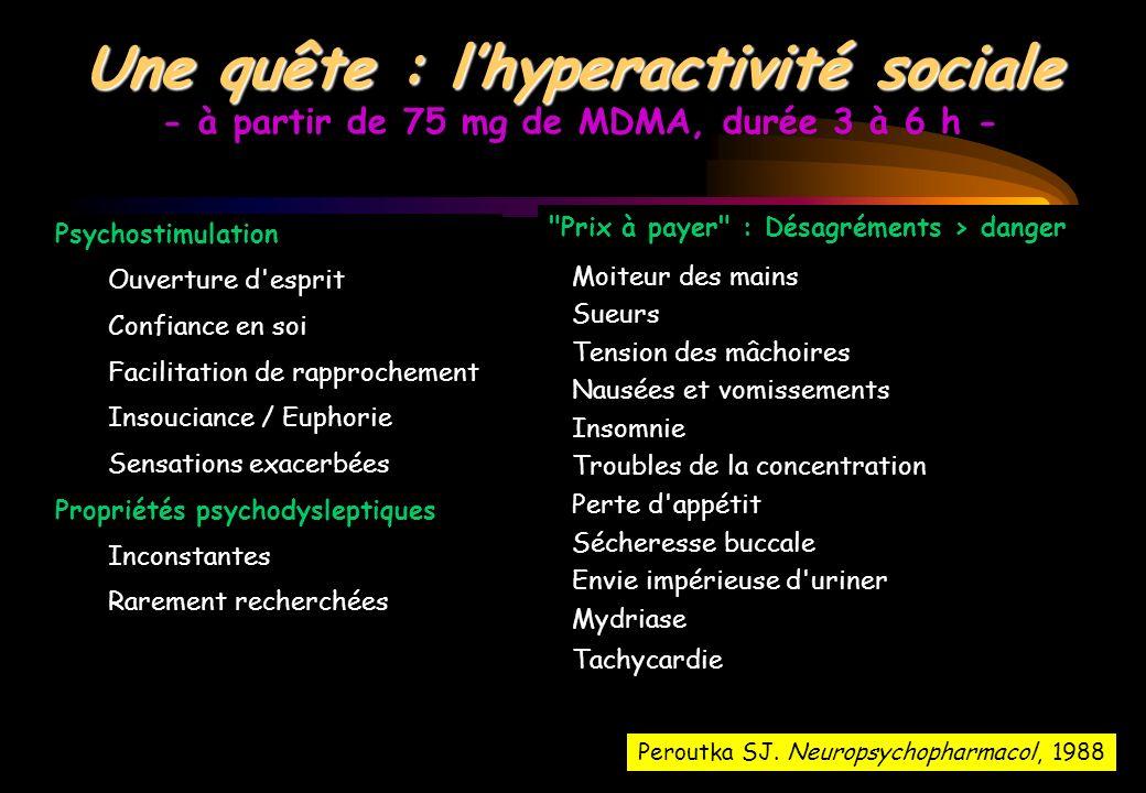 Une quête : l'hyperactivité sociale