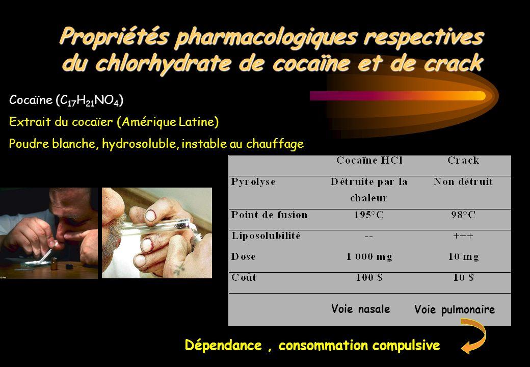 Propriétés pharmacologiques respectives du chlorhydrate de cocaïne et de crack