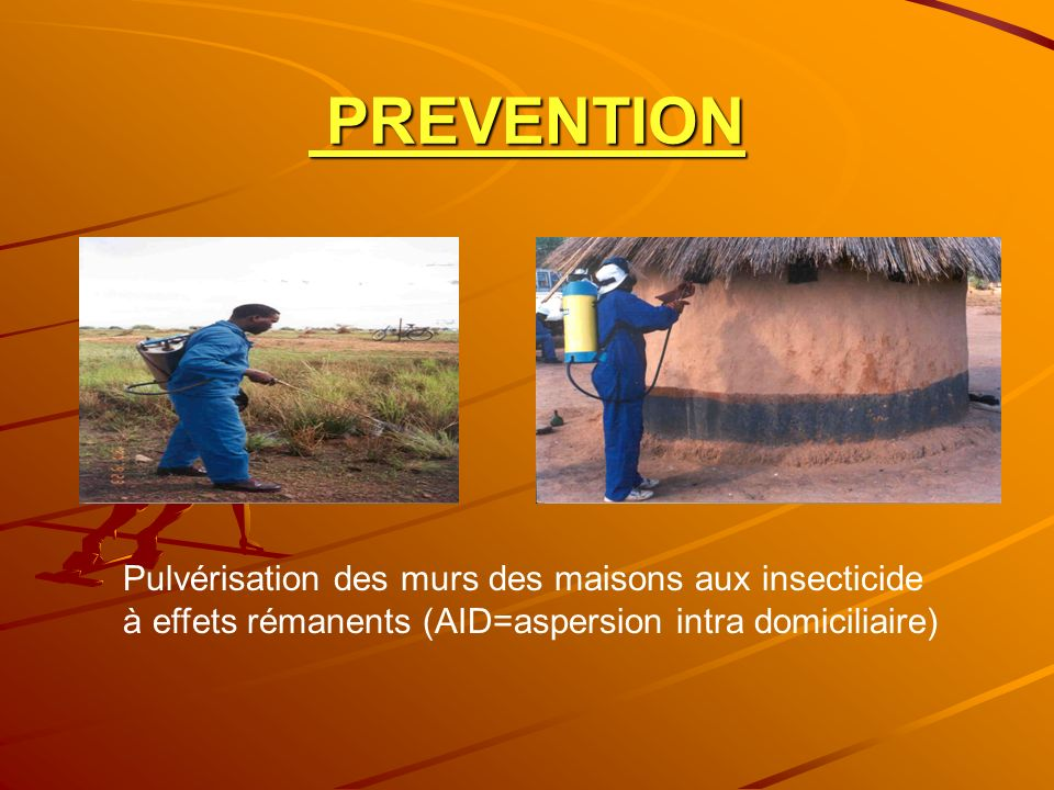 PREVENTION Pulvérisation des murs des maisons aux insecticide