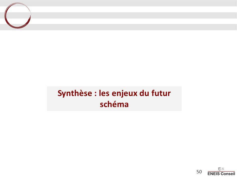 Synthèse : les enjeux du futur schéma