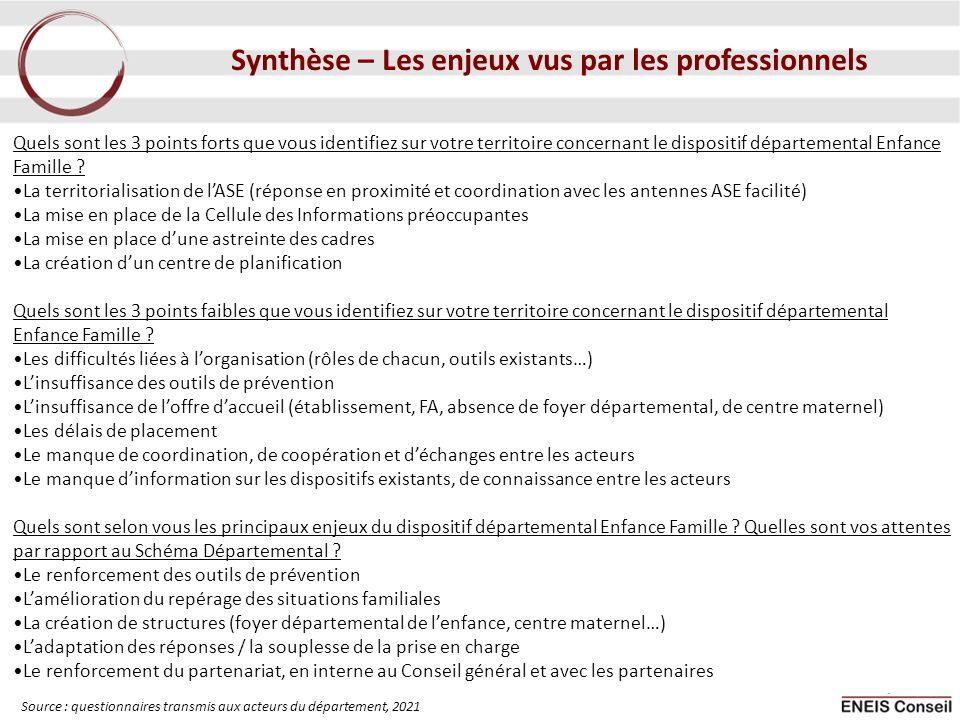 Synthèse – Les enjeux vus par les professionnels
