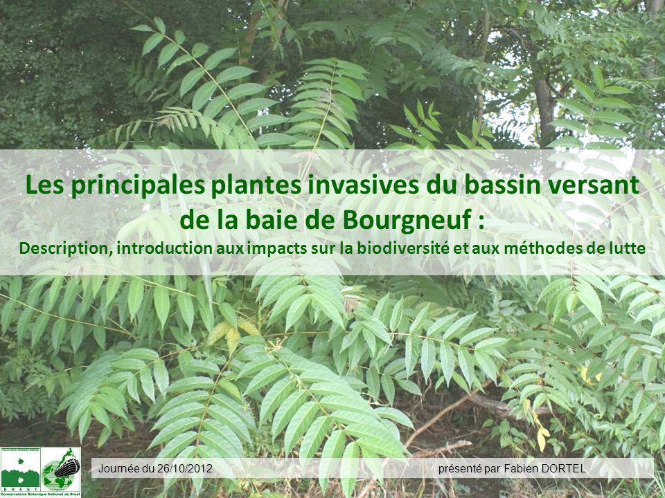 Les principales plantes invasives du bassin versant de la baie de Bourgneuf : Description, introduction aux impacts sur la biodiversité et aux méthodes de lutte