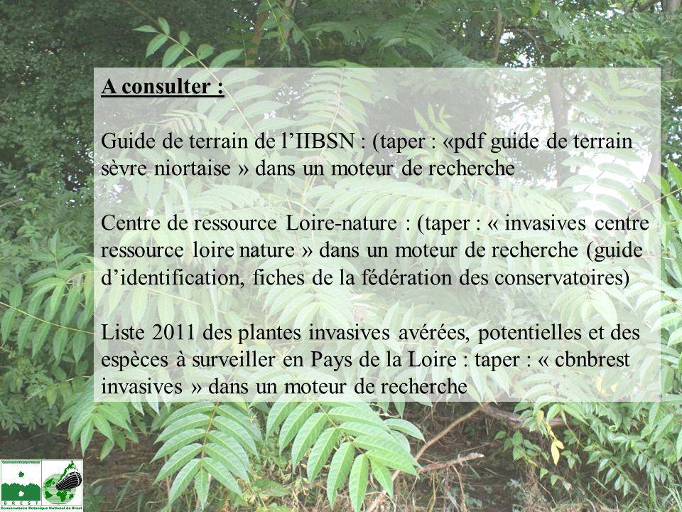 A consulter : Guide de terrain de l'IIBSN : (taper : «pdf guide de terrain sèvre niortaise » dans un moteur de recherche.