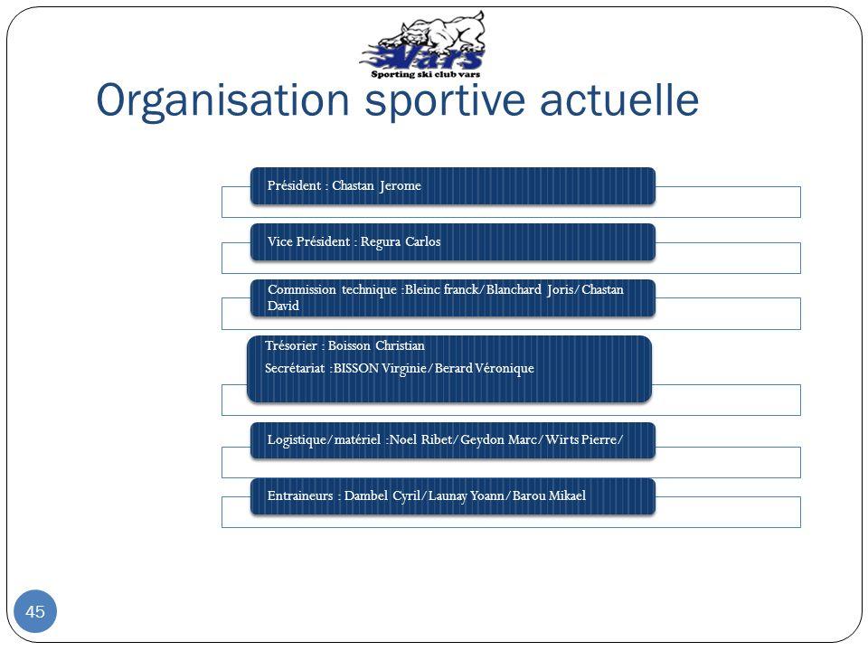 Organisation sportive actuelle