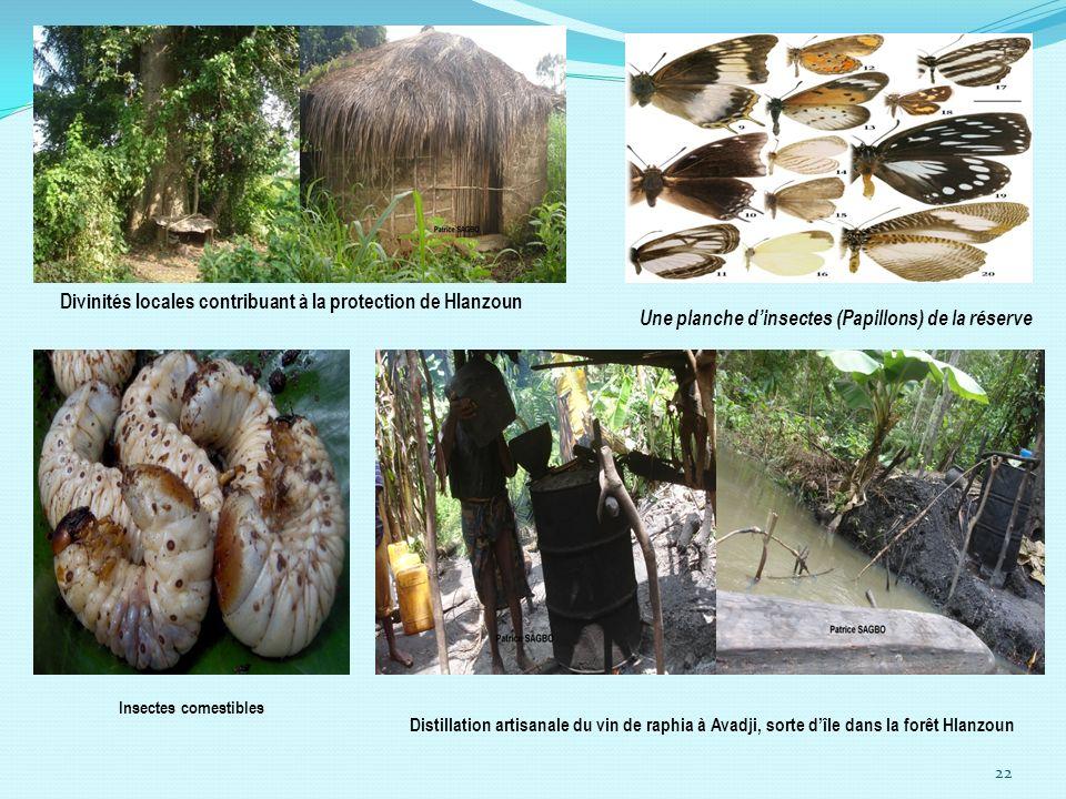 Divinités locales contribuant à la protection de Hlanzoun