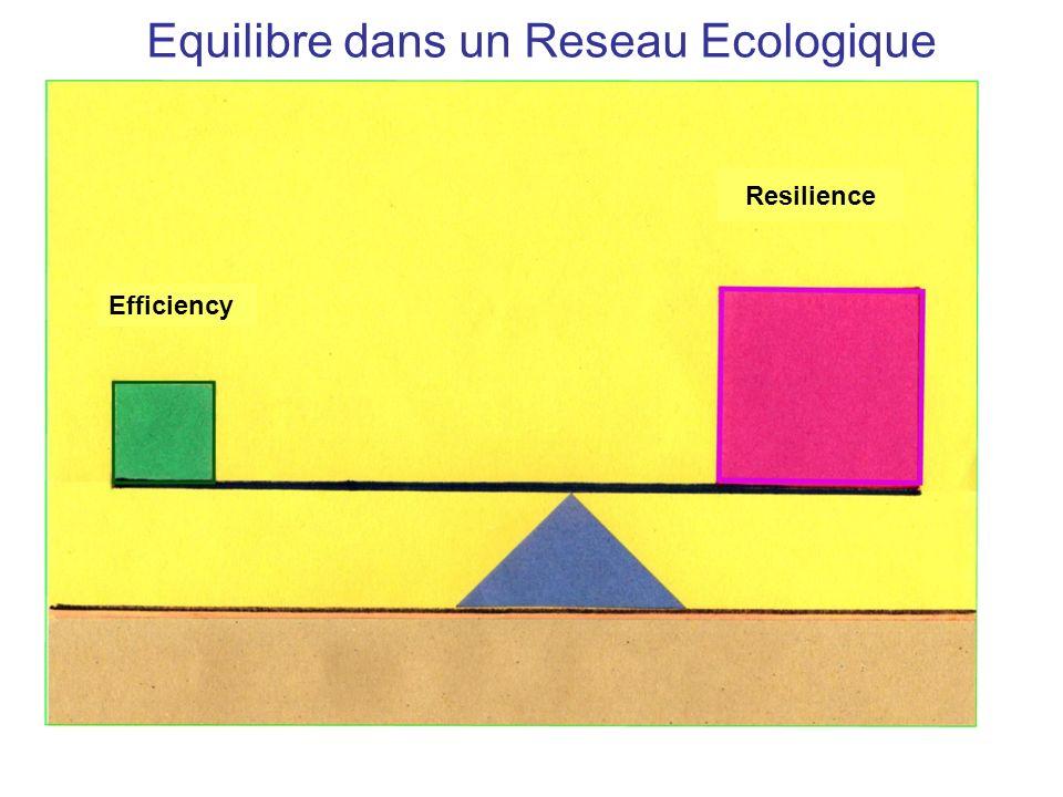 Equilibre dans un Reseau Ecologique