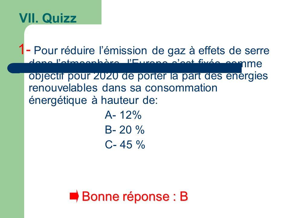 VII. Quizz