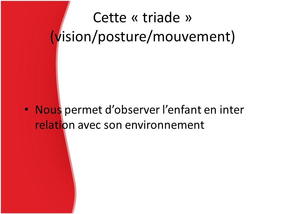 Cette « triade » (vision/posture/mouvement)