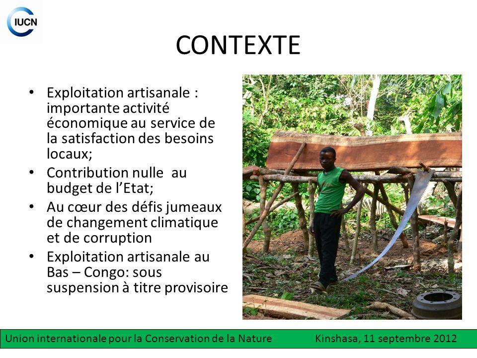 CONTEXTE Exploitation artisanale : importante activité économique au service de la satisfaction des besoins locaux;