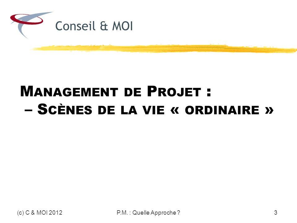 Management de Projet : – Scènes de la vie « ordinaire »