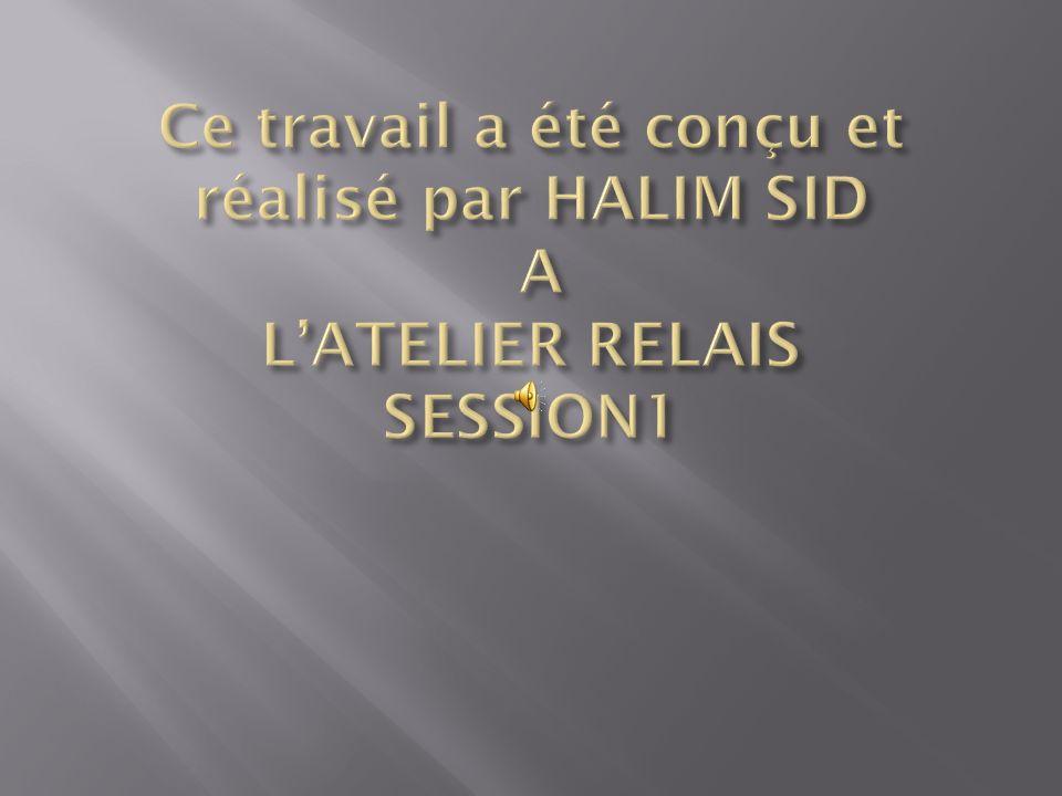 Ce travail a été conçu et réalisé par HALIM SID A L'ATELIER RELAIS SESSION1