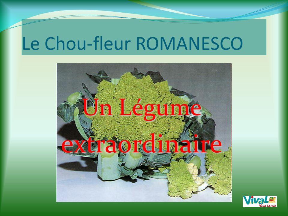 Le Chou-fleur ROMANESCO