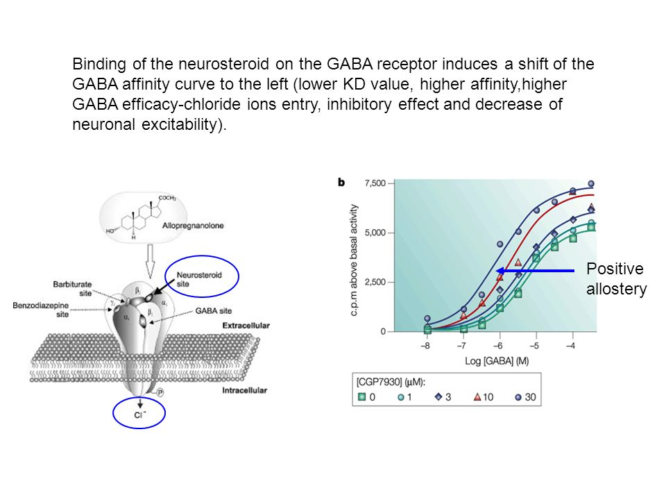 Binding of the neurosteroid on the GABA receptor induces a shift of the GABA affinity curve to the left (lower KD value, higher affinity,higher GABA efficacy-chloride ions entry, inhibitory effect and decrease of neuronal excitability).