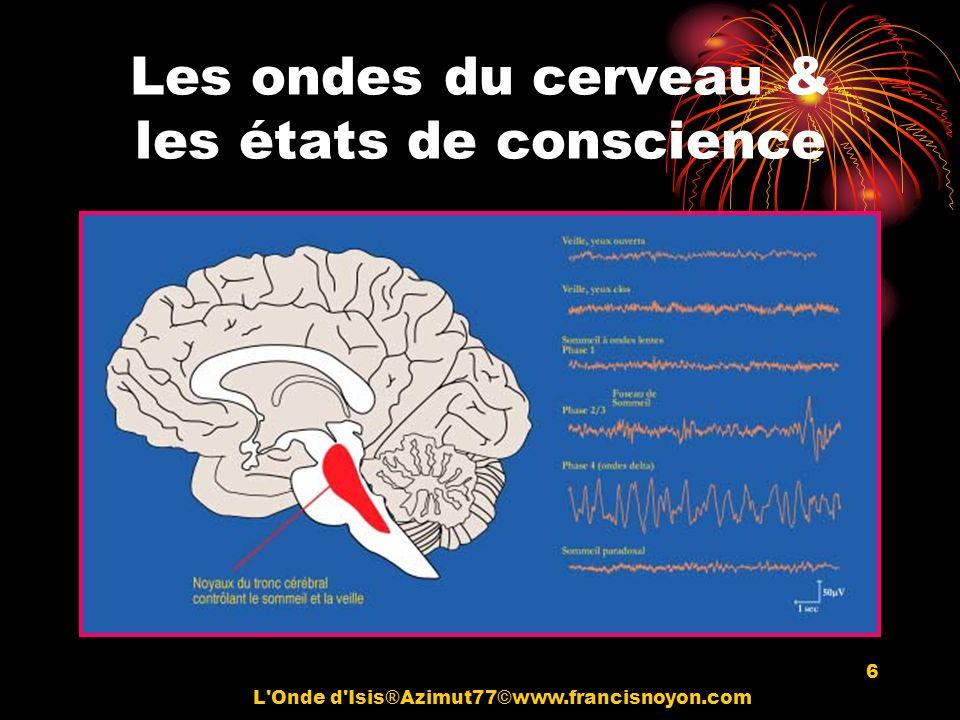 Les ondes du cerveau & les états de conscience