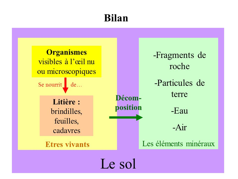Le sol Bilan -Fragments de roche -Particules de terre -Eau -Air