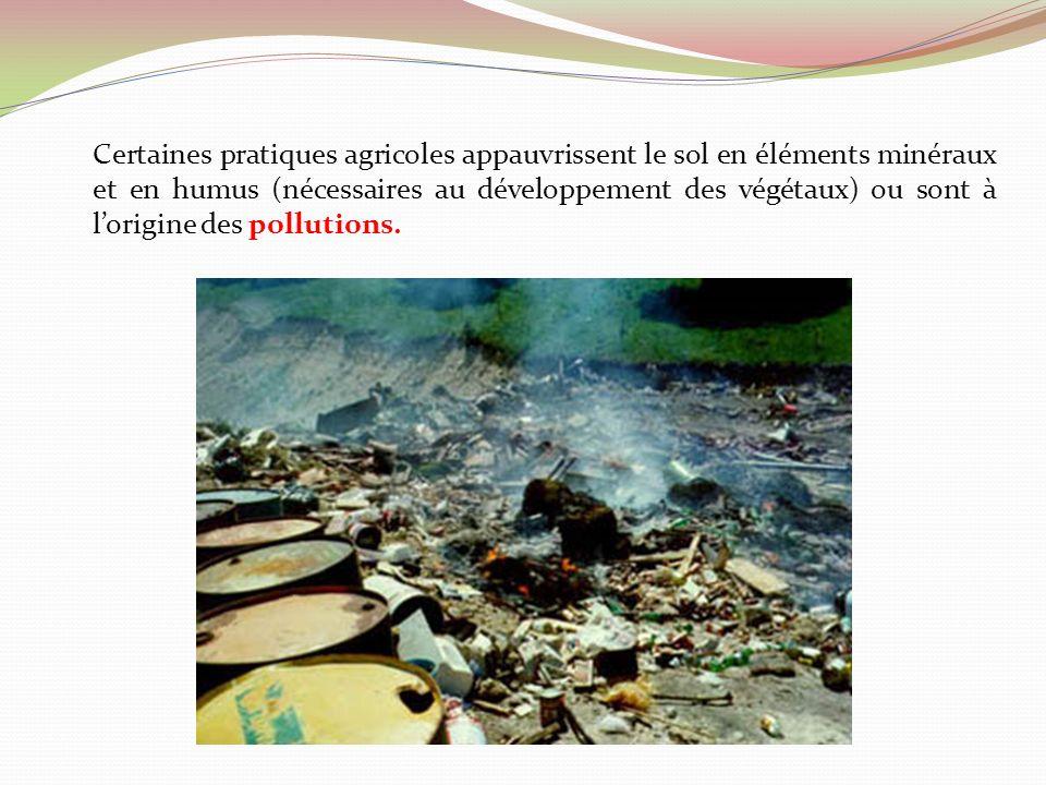 Certaines pratiques agricoles appauvrissent le sol en éléments minéraux et en humus (nécessaires au développement des végétaux) ou sont à l'origine des pollutions.