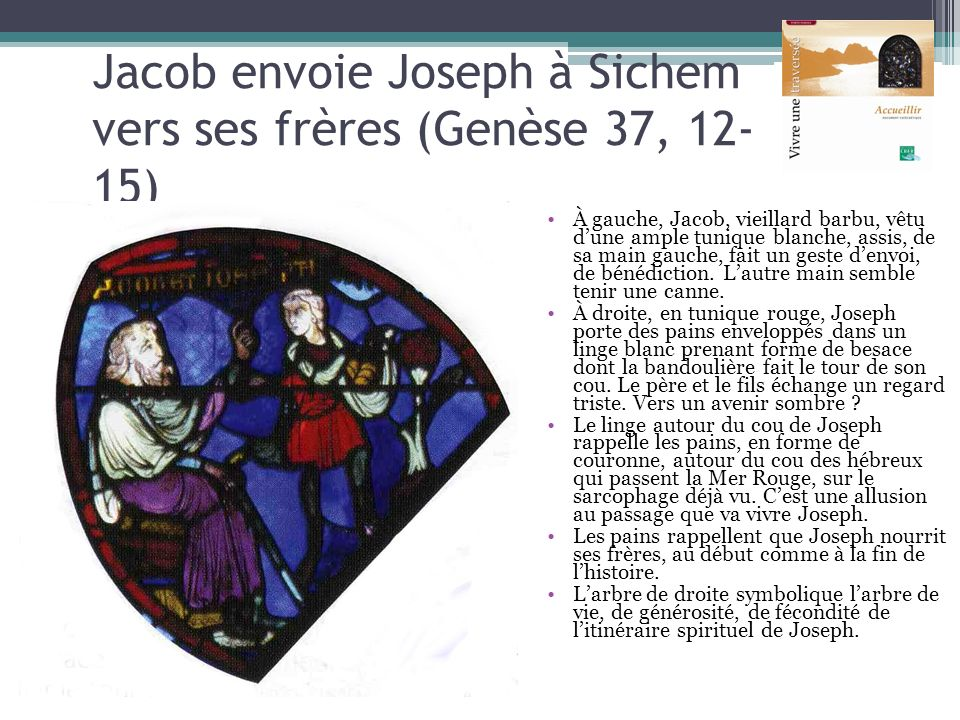 Jacob envoie Joseph à Sichem vers ses frères (Genèse 37, 12-15)