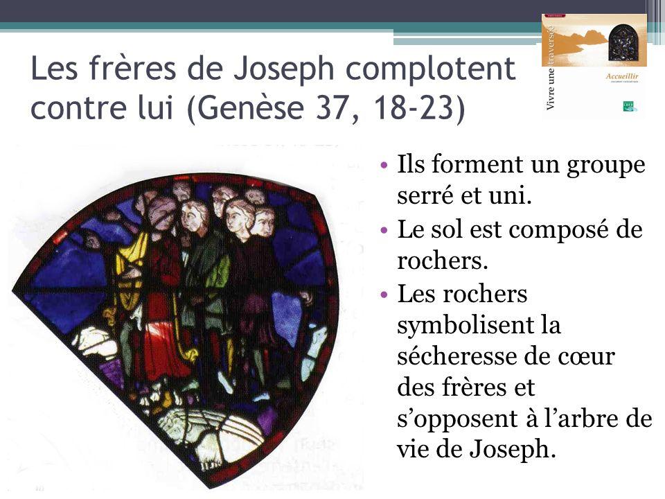 Les frères de Joseph complotent contre lui (Genèse 37, 18-23)