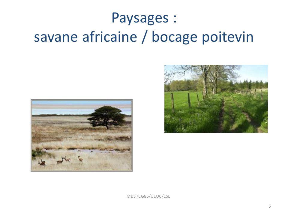 Paysages : savane africaine / bocage poitevin